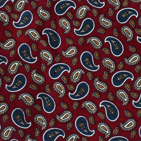 Shah of Iran Burgundy Paisley Kids Bow Tie