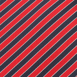 Striped Maroon with Navy Blue Fabric Necktie X148