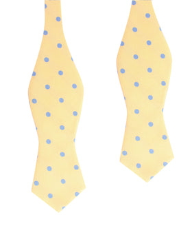 Yellow with Light Blue Polka Dots Self Tie Diamond Tip Bow Tie