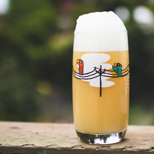 Bird on a Wire Pint Glass