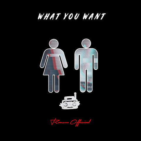 What You Want [With Hook]