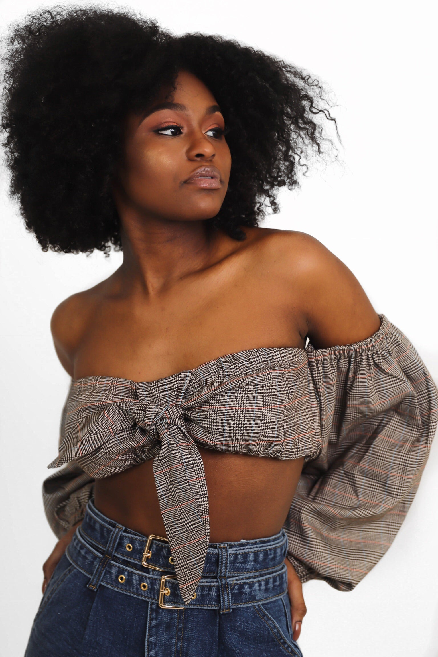Brown Plaid Crop Tie Top