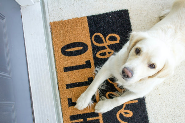 welcome mat with a puppy