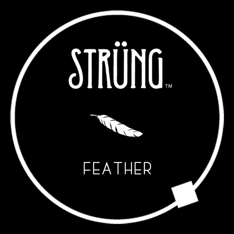 "FEATHER – ""STAIRWAY TO HEAVEN"""