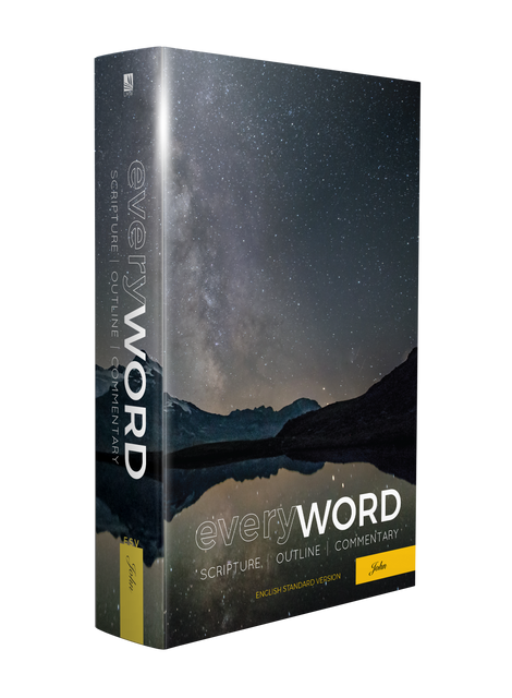 picture of everyWORD: The Gospel of John