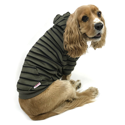 Striped Zip-Up Dog Hoodie- Olive