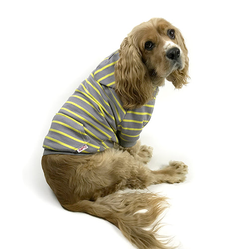 Striped Zip-Up Dog Hoodie- Grey & Yellow