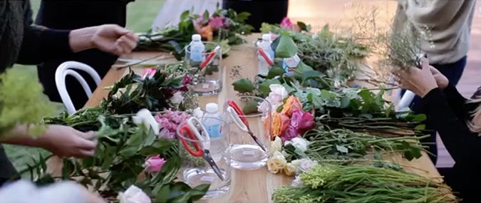 StyleSesh Byron Bay with Elyssium Blooms