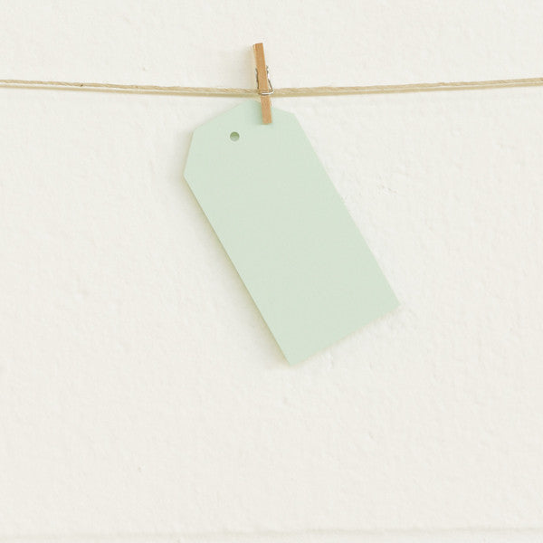 Shipping Tags, Mint, 20pk