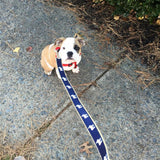 Signature Ribbon Leash (Navy)