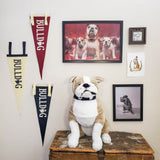 Bulldog Pennant (Cream)