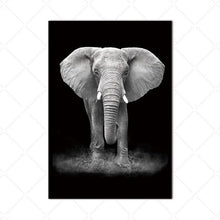Load image into Gallery viewer, Elephant on Black - African Photographic Print