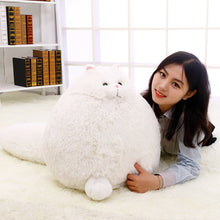 Load image into Gallery viewer, Persian Pretties Plush Stuffed Cat Dolls