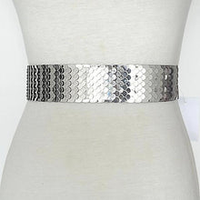 Load image into Gallery viewer, silver snake skin belt