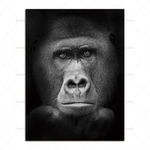 Load image into Gallery viewer, Sublime Gorilla on Black African Photographic Print
