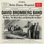 The Blues, The Whole Blues And Nothing But The Blues By David Bromberg Band