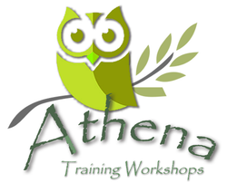 Picture of an owl sitting on an olive branch - the Athena Academy of Mental Health and Well-Being logo symbol logo