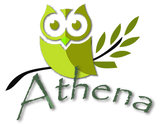 Logo of Athena Academy for Mental Health - the Owl and Olive Branch