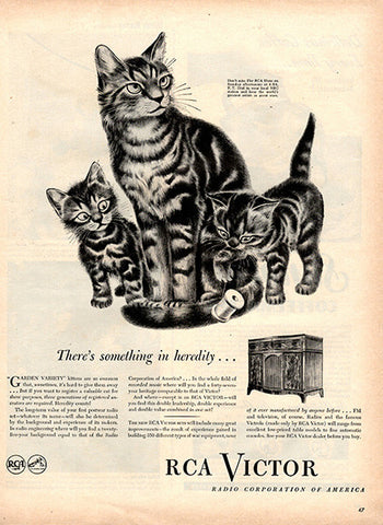 1945 RCA Victor Radio Cats Original Home and Office Print Ad - TnTCollectibles