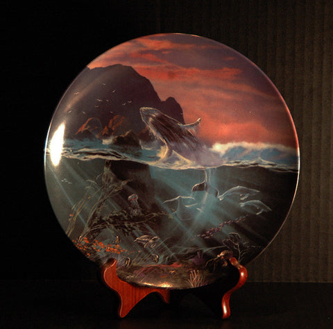 All The Miracles To Sea #8 Bradford Exchange The World Beneath The Waves Collector Plate - TnTCollectibles