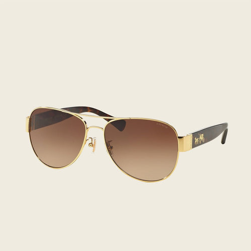 Coach HC7059 923813 Sunglasses