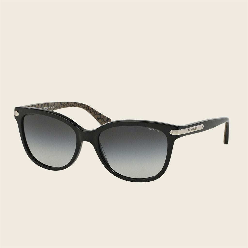 Coach HC8132 526111 Sunglasses