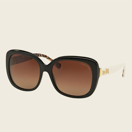 Coach HC8158F 5336T5 Sunglasses