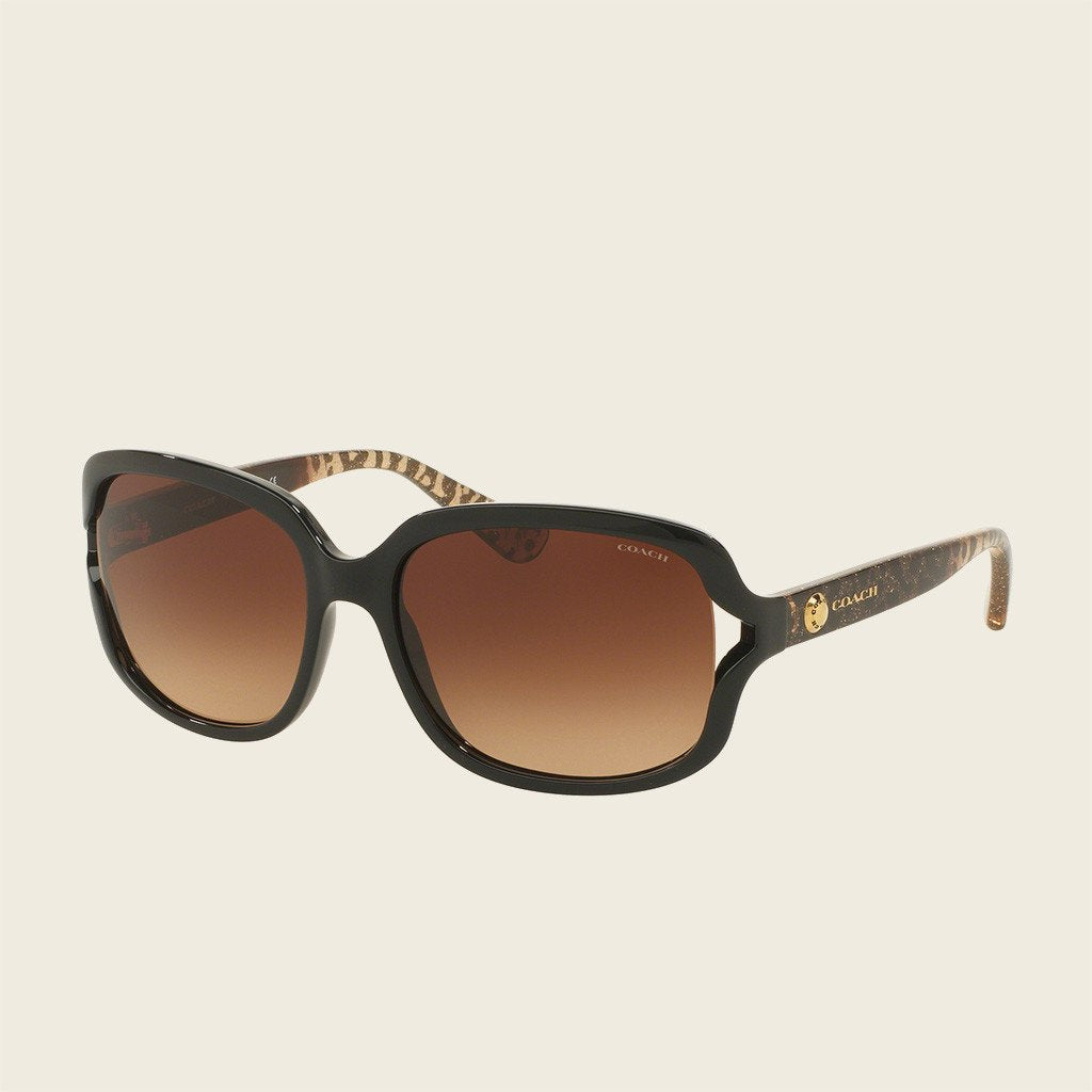 Coach HC8169 535313 Sunglasses