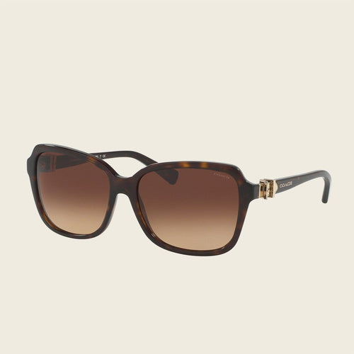 Coach HC8179F 512013 Sunglasses
