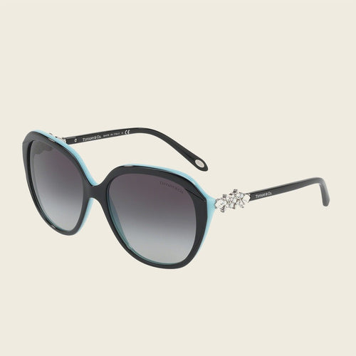 Tiffany & Co. TF4132BF 80553C Sunglasses