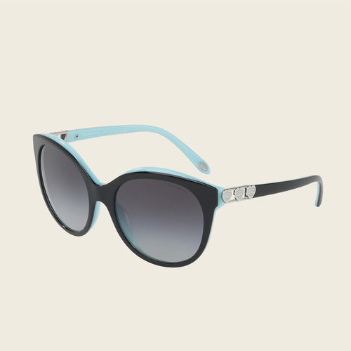 Tiffany & Co. TF4133F 80553C Sunglasses