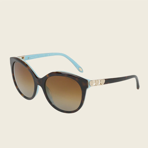 Tiffany & Co. TF4133F 8134T3 Sunglasses