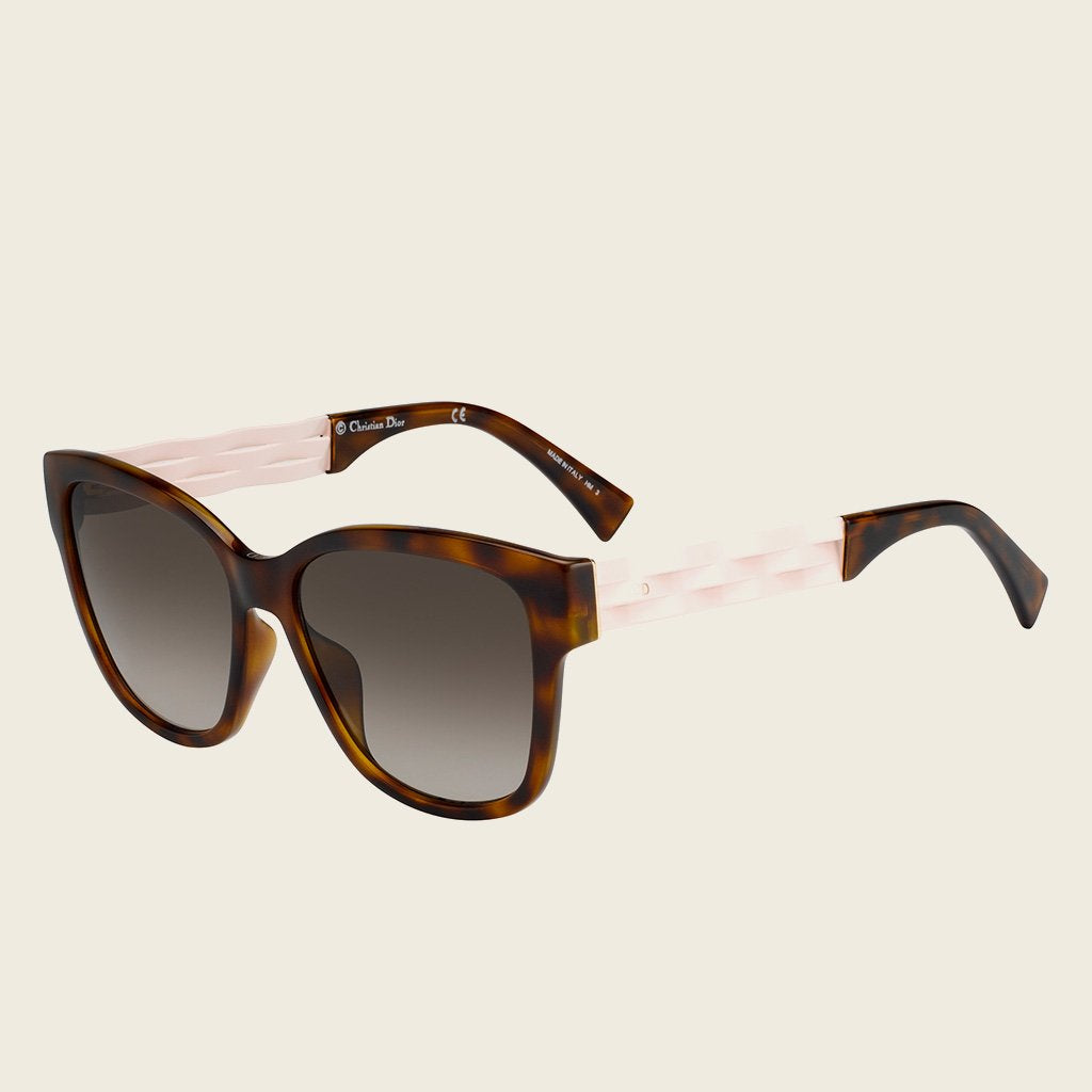 Dior DIOR RIBBON 1N S5M HA Sunglasses