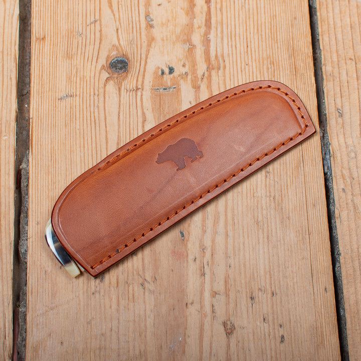 Horn Comb and Case Brown