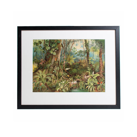 Jungle Lithografie