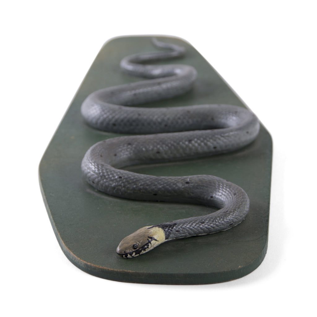 Grass Snake - Educational Model