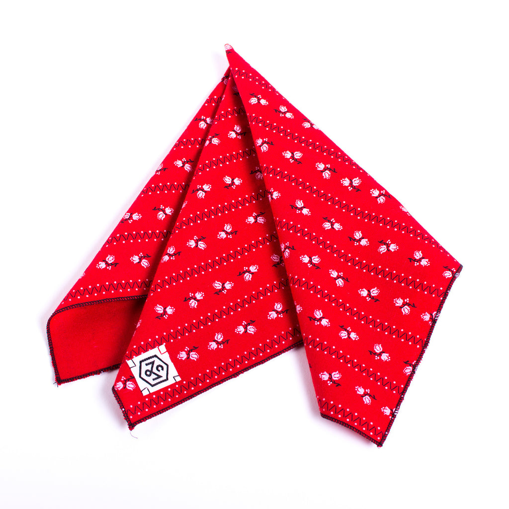 Handkerchief Red and White