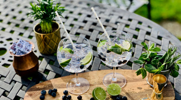 What Are The Best Mixers For Gin?