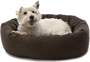 Dog Gone Smart Rectangle Pet Bed
