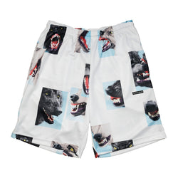 Alpha Troop Basketball Shorts (white)