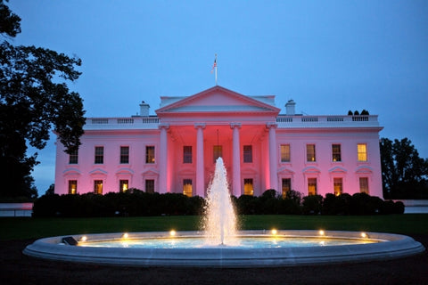 A PRETTY IN PINK Photo: The North Portico exterior of the White House is illuminated pink in honor of Breast Cancer Awareness Month, Oct. 1, 2012 (Official White House Photo by Sonya N. Hebert)