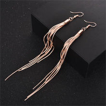 Load image into Gallery viewer, Vintage Long Tassel Earrings - TAIGS000