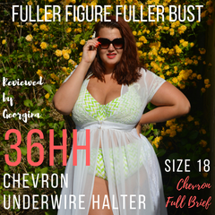 Fuller Figure Fuller Bust review of Lilly & Lime underwire halter bikini top and full brief bikini bottoms