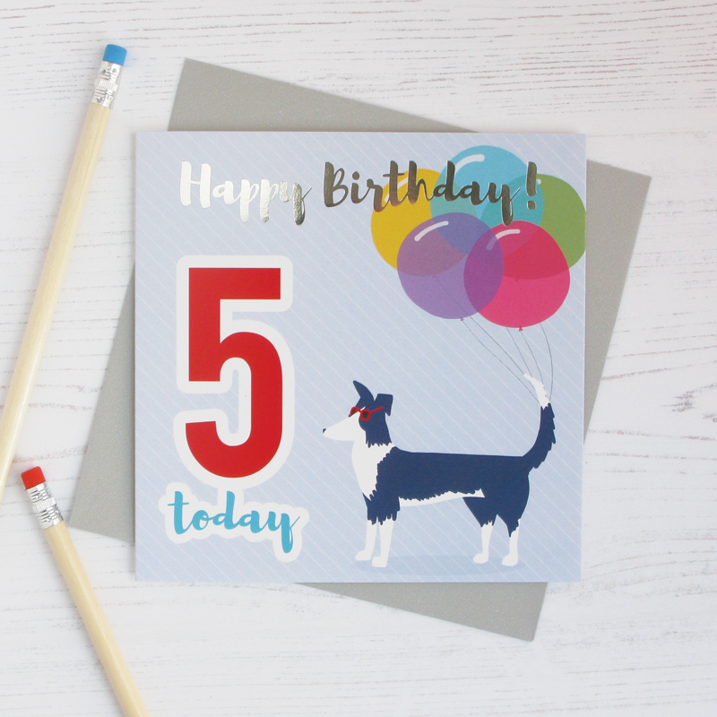 Happy birthday age 5 sheepdog silver foil card - Draenog