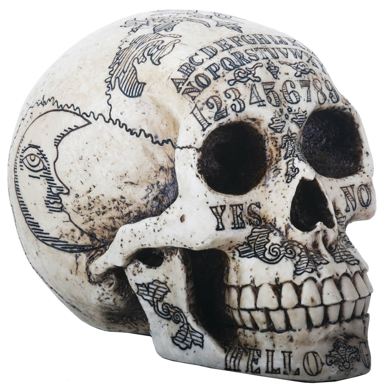 Human Looking Skull With Ouija Symbols - Home Decoration