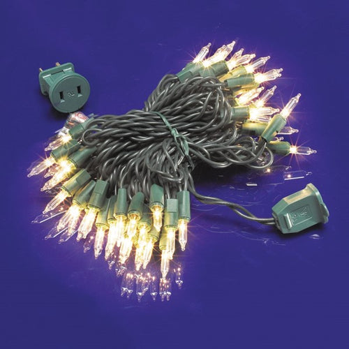 25ft Incandescent Mini Light Set 6