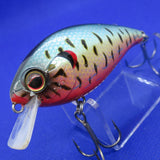 SHALLOW HAWG [Used]