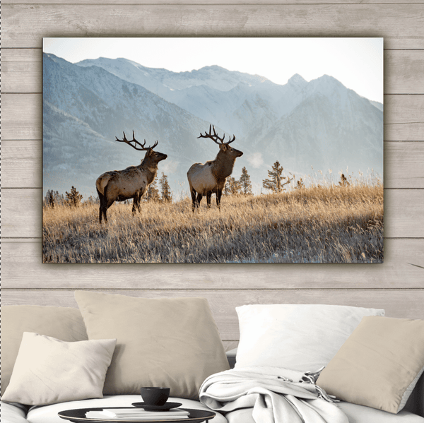 Rocky Mountain Elk Canvas Wall Art - Canvas Wall Art - HolyCowCanvas