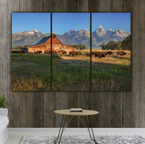 Buffalo at Grand Teton National Park - Canvas Wall Art - HolyCowCanvas