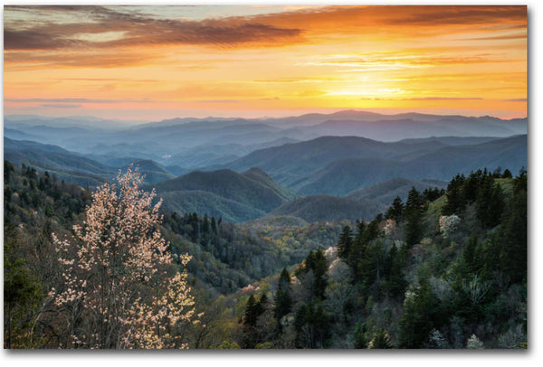 Smoky Mountain Canvas Wall Art at Sunset - Canvas Wall Art - HolyCowCanvas